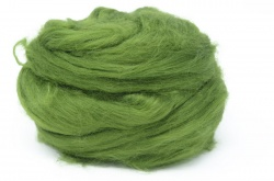 Tussah Silk - Holly DTS16