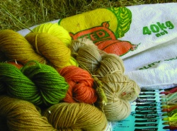 Landscape Sampler Dye Kit: Rural